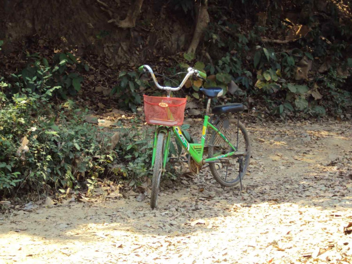 my green bycicle