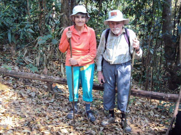 Dschungel Treck