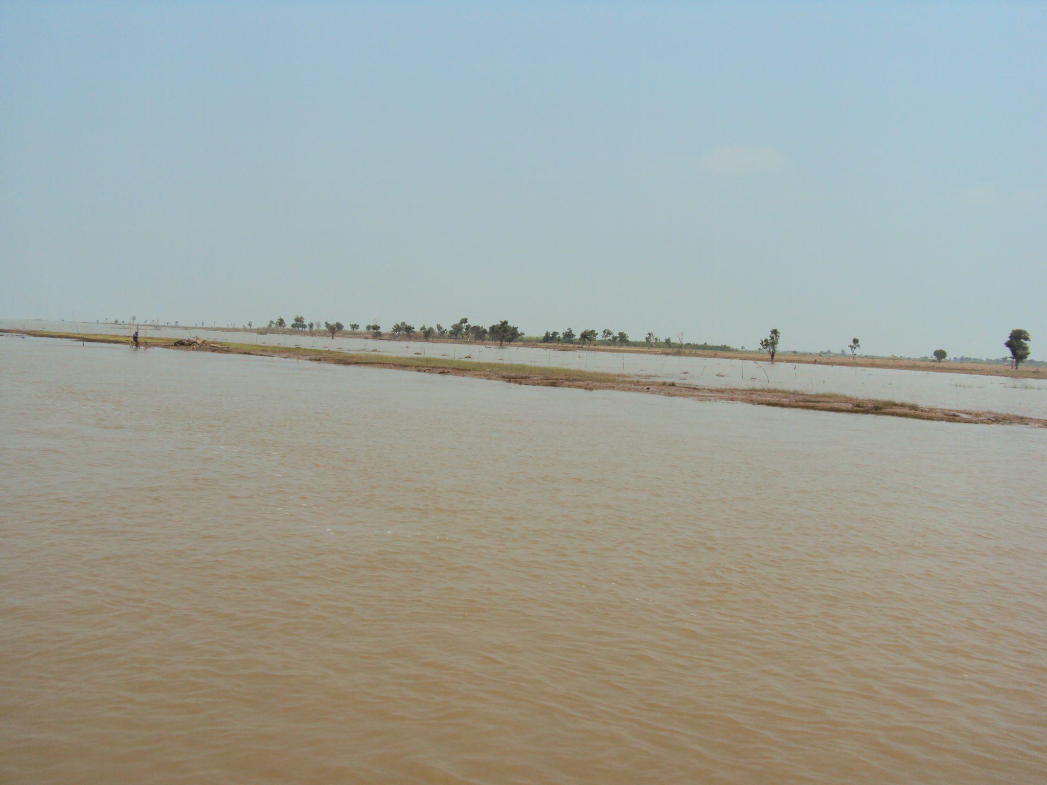 Brown water on Tonle Sap Lake