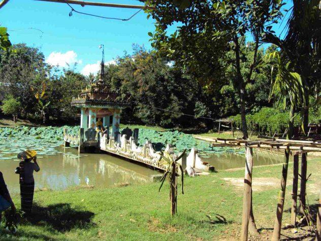 Lake at the Sanctuary