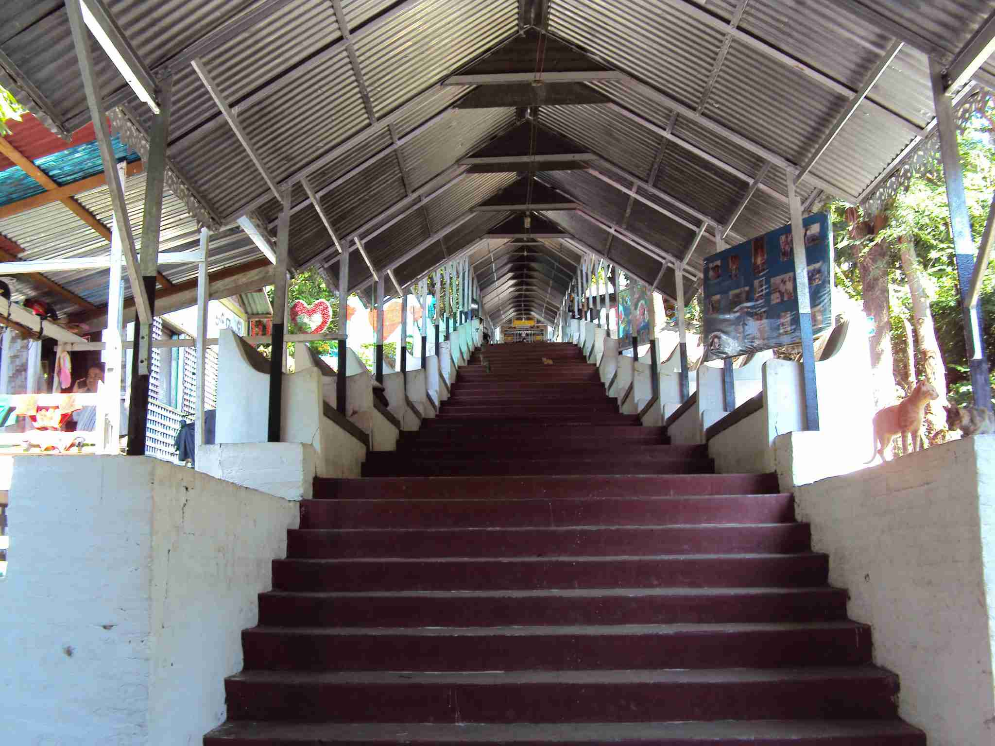 Stairs to hill