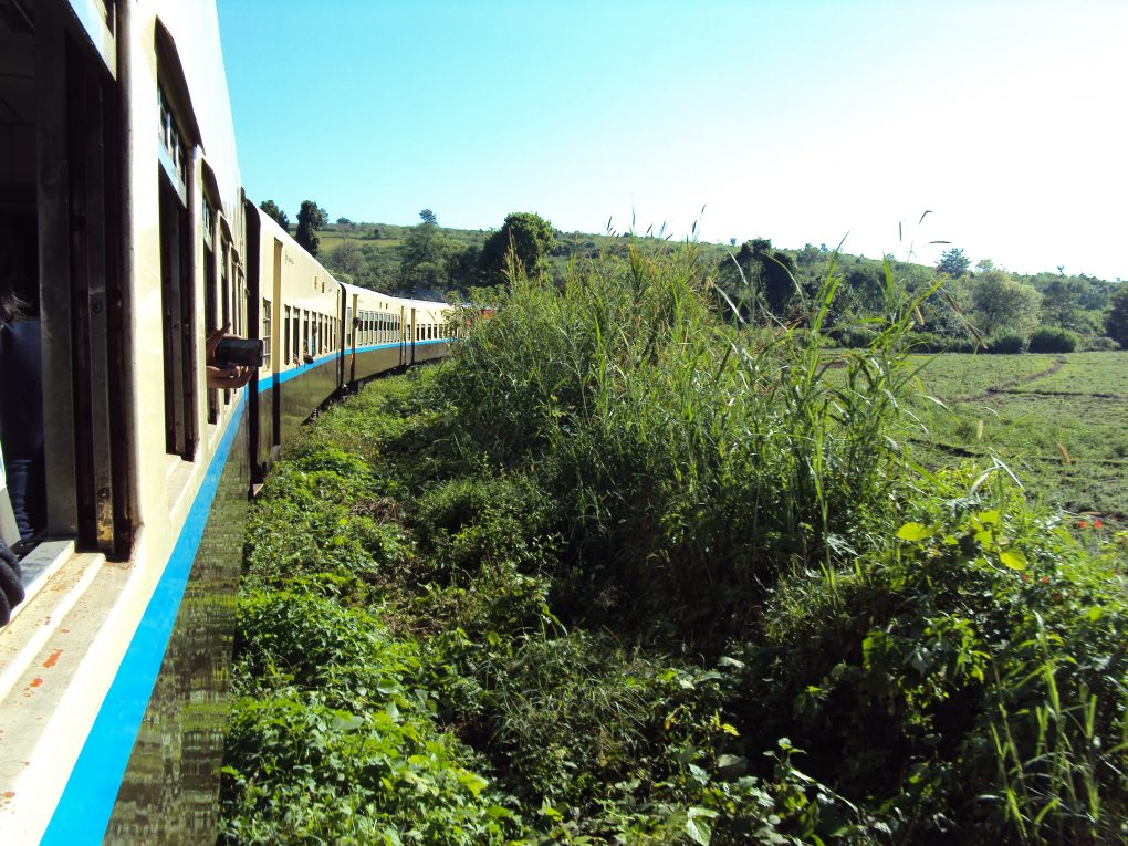 Aussicht vom Zug