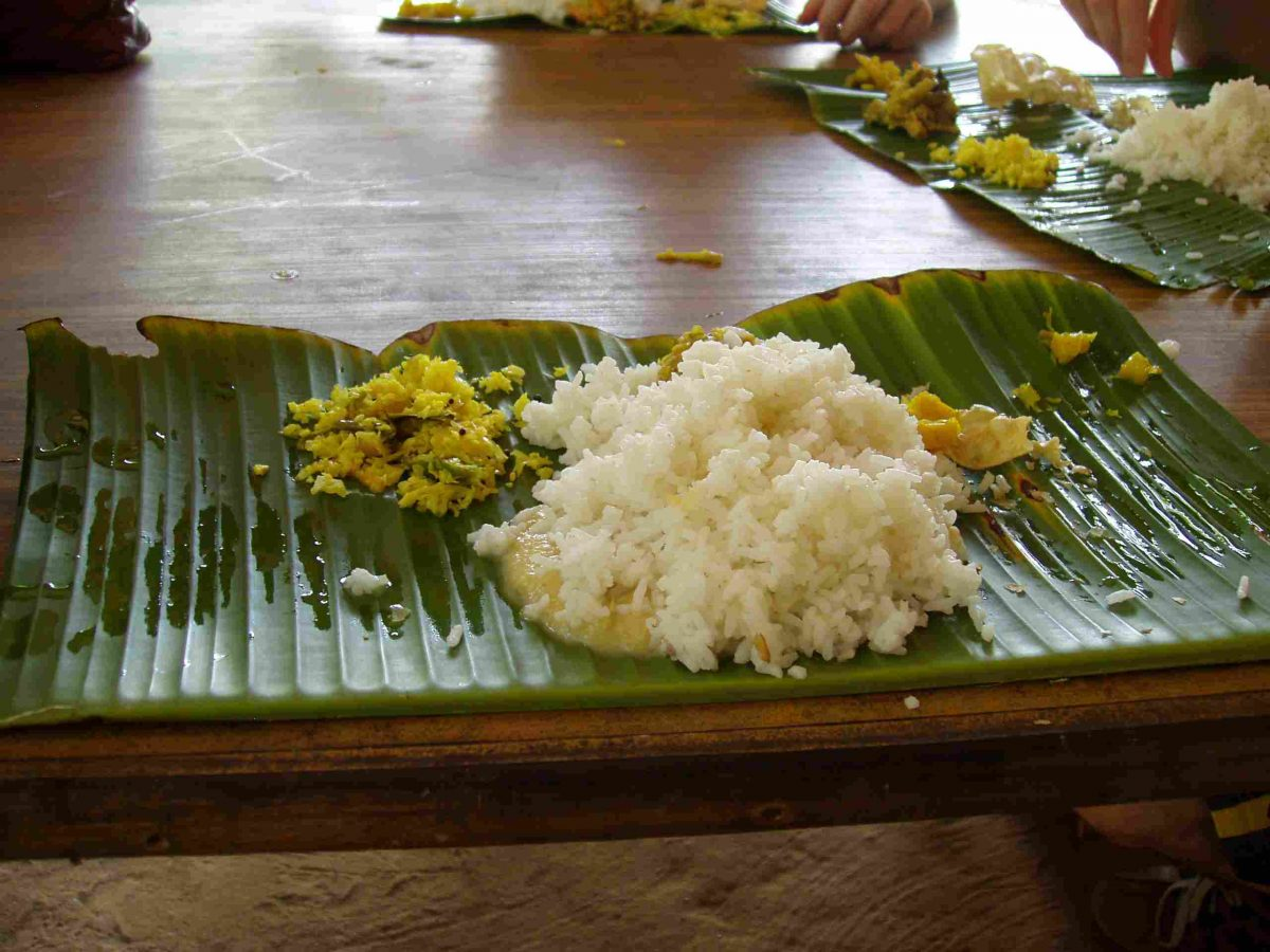Mittagessen in den Backwaters