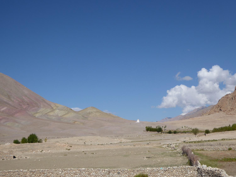 Leblose Wüste mit vereinzelten Büschen