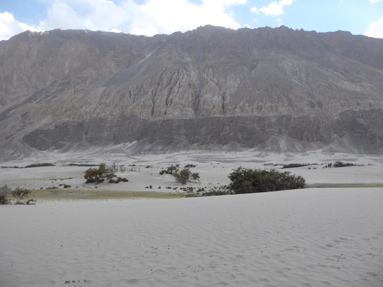 The dunes are a legacy of the river