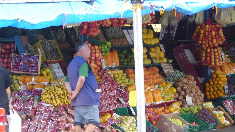 lauter Gemüse und Obst