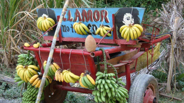Permalink auf:Kuba – El Amor no tiene Edad