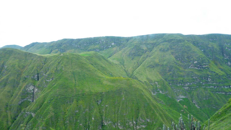 Green Landscape 3