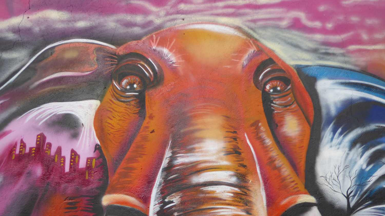 Medellin Graffiti Comuna 13 nr 4