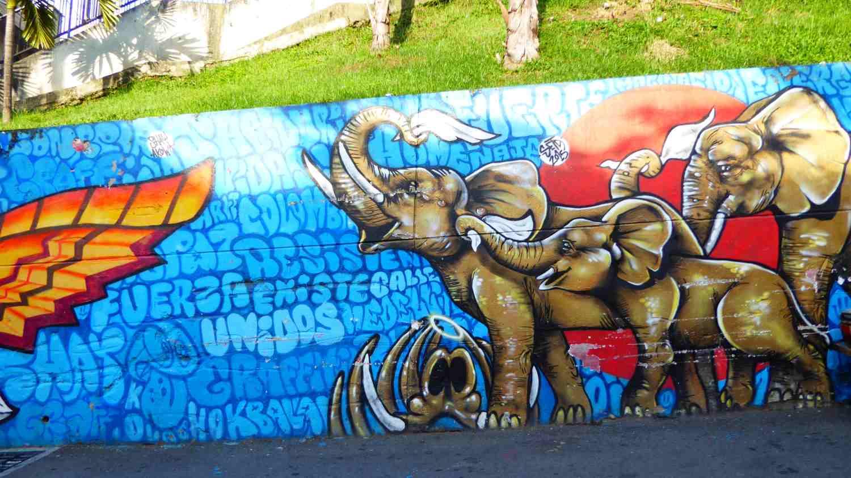 Medellin Graffiti Comuna 13 nr 9
