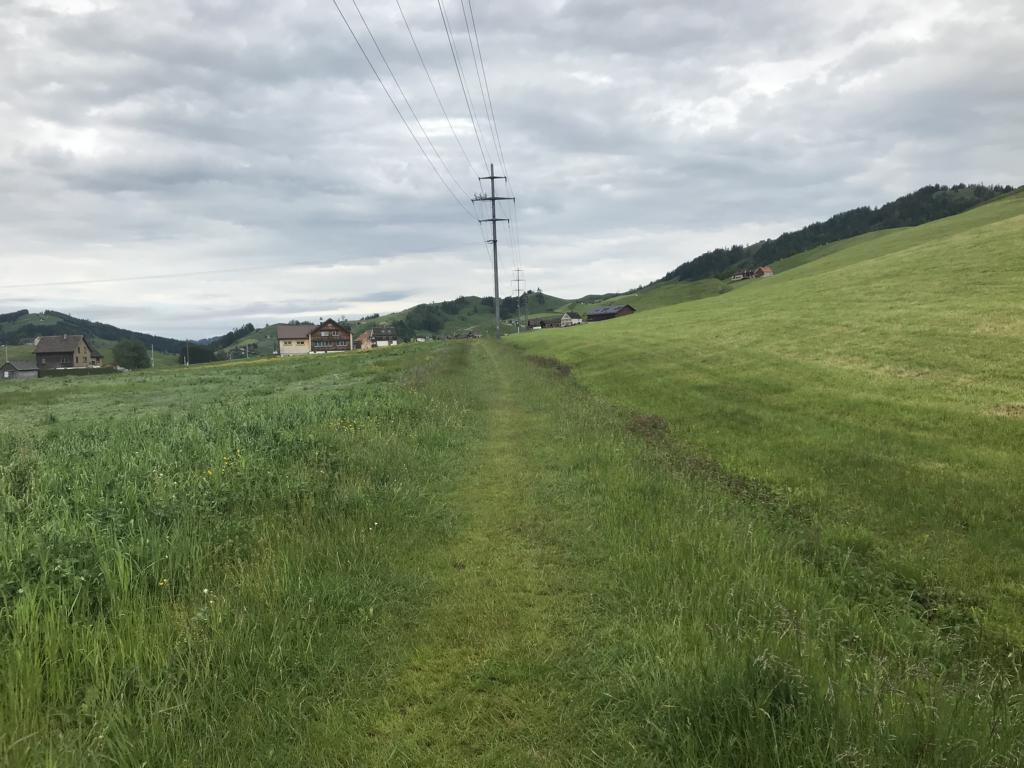 grassy path to Urnäsch