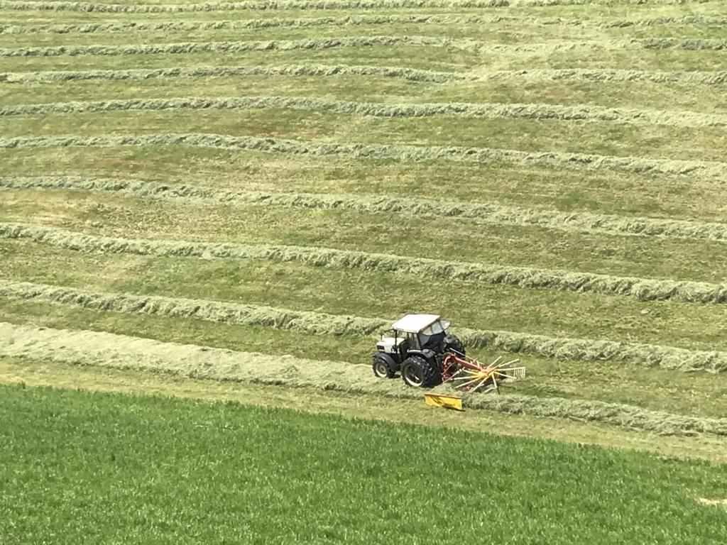 Minding the harvest