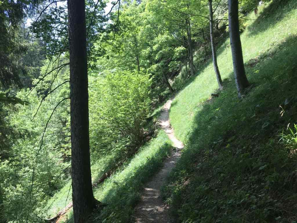 ... sometimes a steep dangerous path