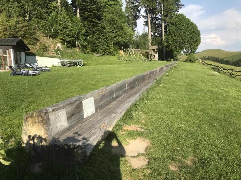 The longesr bench of the world, cut from one single tree