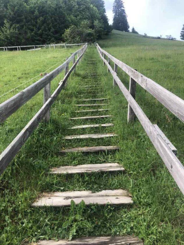Ascent to the Guggershörnli