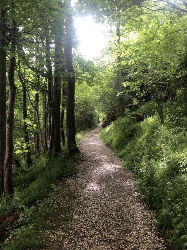 Path to Guggershörnli