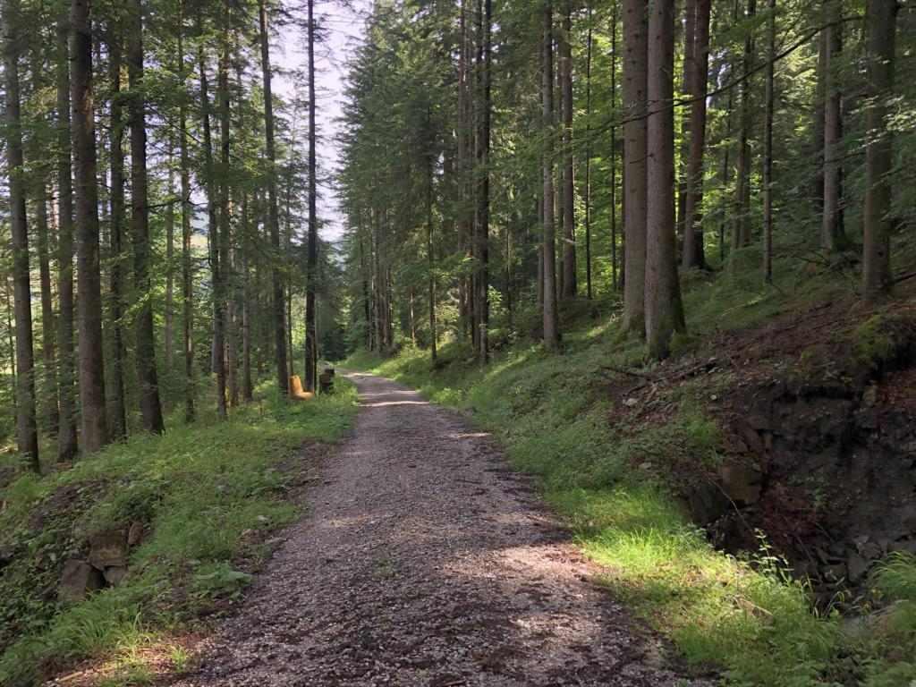 Destination Schwarzsee