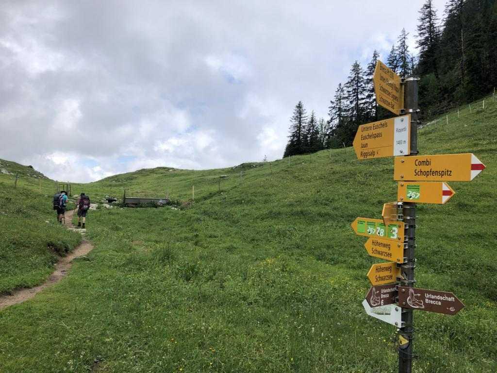Towards the Euschelpass