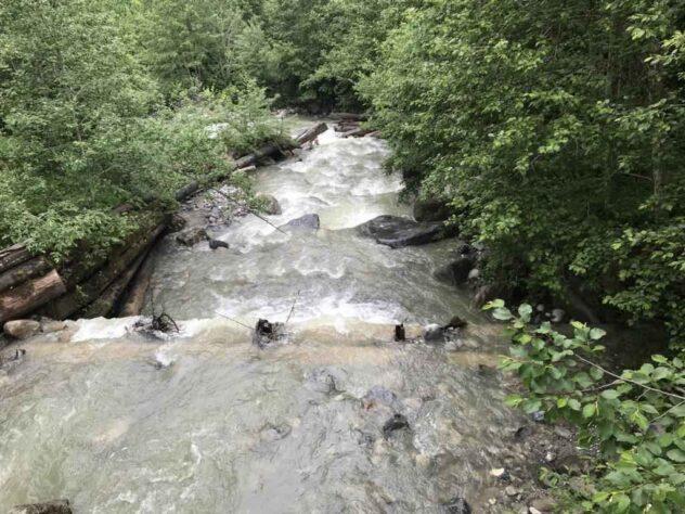 Creek with nightly rain water